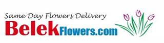 flower delivery belek Logo