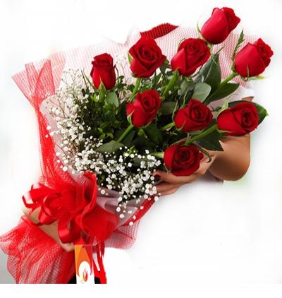 blumen in belek 9 Rote Rosen