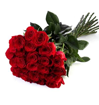karma Çiçek buketi 25 Kırmızı Gül Buketi