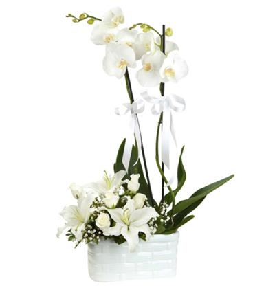beyaz lilyum buketi Orkide Lilyum Gül