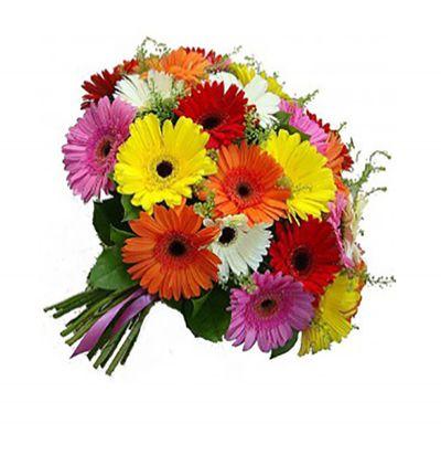 доставка цветов Белек Гербера Букет