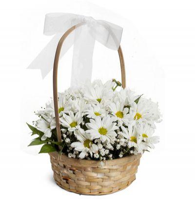 доставка цветов Белек Маргаритки в корзинке